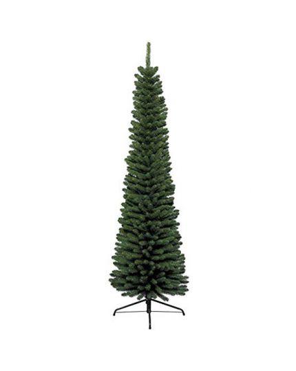 Albero Natale Pino Verde Pencil Pine Varie Dimensioni