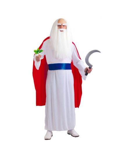 Costume Sacerdote Druido Uomo