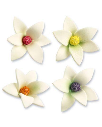 Decorazione Fiore Bianco Pistillo Colorato 7cm